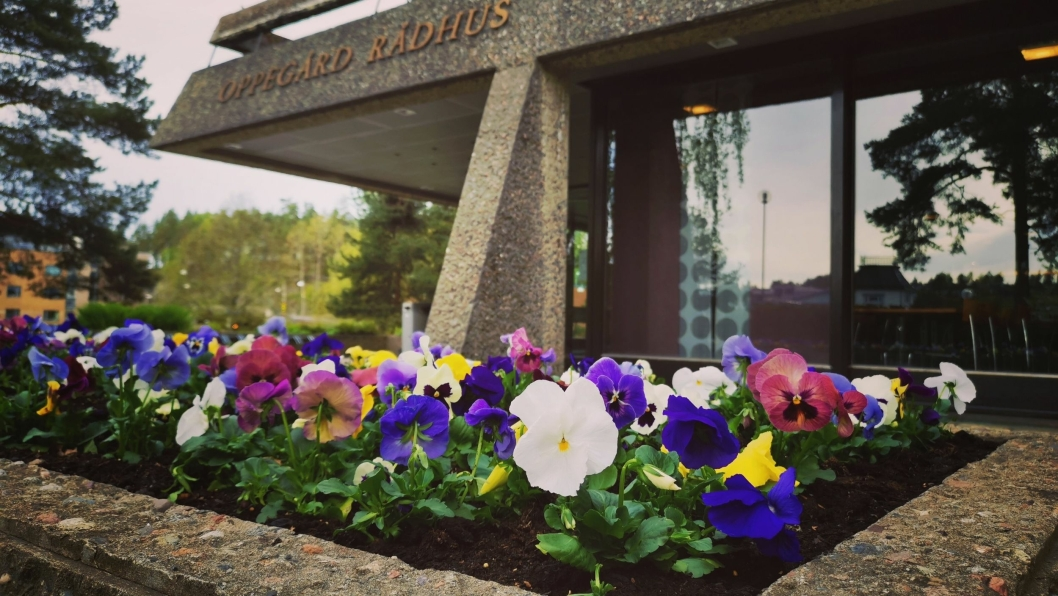 BLOMSTER PÅ PLASS: Onsdag kom årets vårblomster på plass i bedet utenfor gamle Oppegård rådhus.