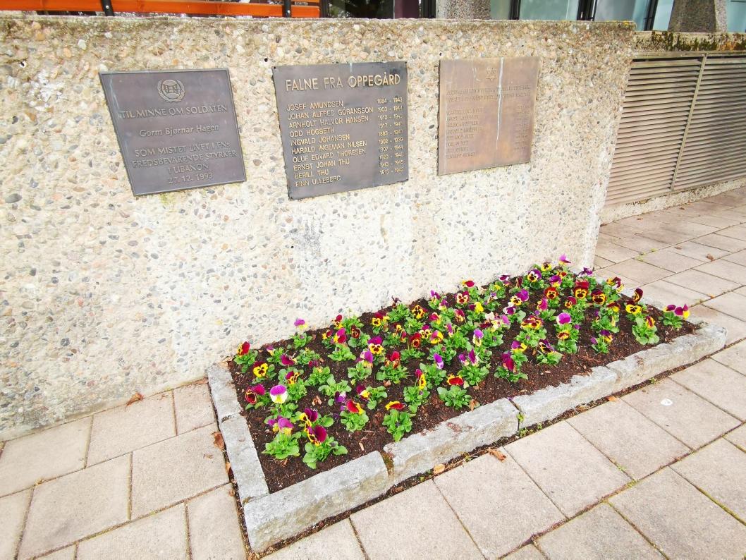 MINNESMERKET: Ved minnesmerket nedenfor inngangen til rådhuset er det det også plantet stemorsblomster.