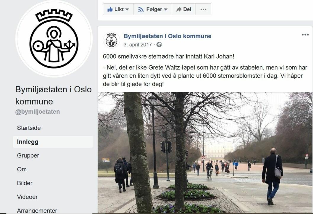 """6.000 STEMØDRE I KARL JOHAN: I april 2017 skrev Bimiljøetaten følgende på sin Facebook-side: """"6000 smellvakre stemødre har inntatt Karl Johan! - Nei, det er ikke Grete Waitz-løpet som har gått av stabelen, men vi som har gitt våren en liten dytt ved å plante ut 6000 stemorsblomster i dag. Vi håper de blir til glede for deg!"""""""