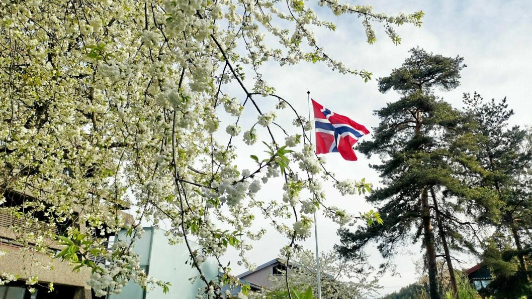 PÅGÅR FORTSATT: – Kampen for grunnlovens idealer pågår fortsatt, skriver Hans Martin Enger. Dette bildet ble tatt utenfor gamle Oppegård rådhus 8. mai i år.