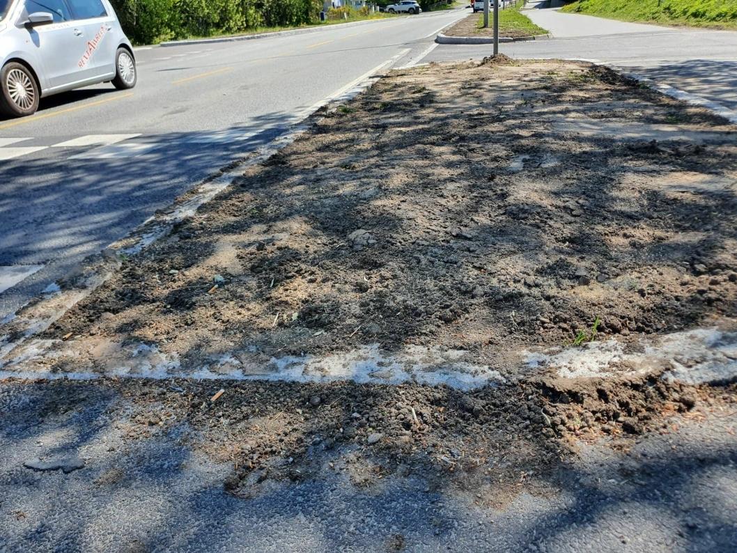 MYE JORDSØL: Før 17. mai ble det lagt på jord langs Sønsterudveien, men det er fortsatt mye jordsøl langs hele strekningen. Bildet ble tatt 20. mai.