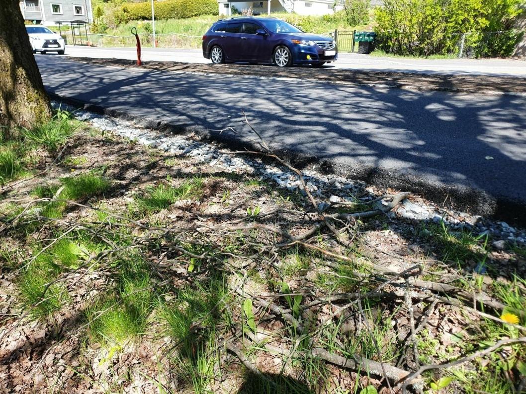 FLERE MANGLER: På enkelte steder langs veien mangler det jord. De skadede trærne har ikke blitt beskjært ennå. Flere av de ødelagte grenene ligger fortsatt strødd langs alleen.