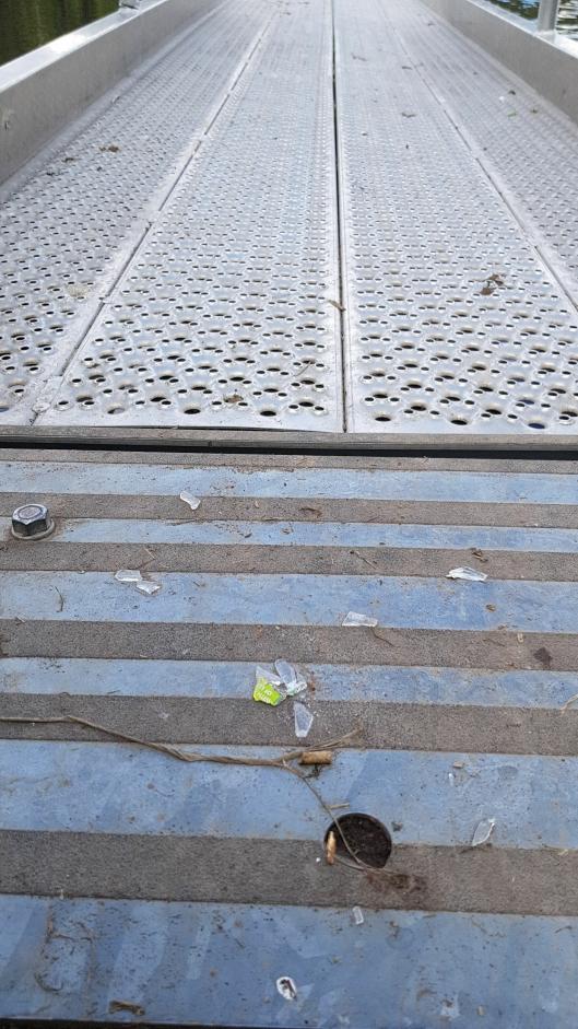 GLASS På BRYGGA: Til og med leideren ut til badebrygga på Tusse var forsøplet med knust glass.