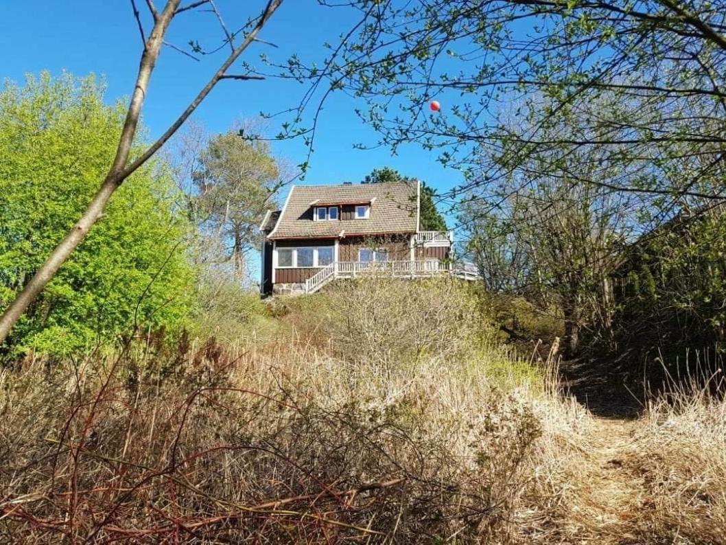 BYR PÅ FLOTTE MULIGHETER: Bildet viset huset Venleik, med verandaen og potensialet rundt. Hagen er i dag gjemt bak vegetasjon.