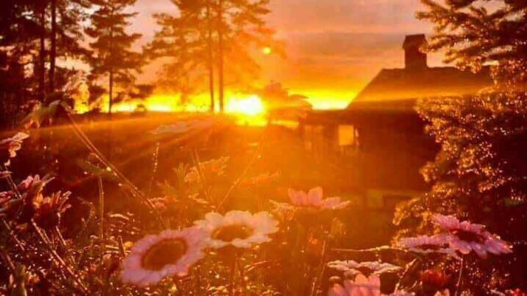 SOLNEDGANG I KOLBOTN SENTRUM: Sjekk den flotte solnedgangen i Kolbotn sentrum! Bildet ble tatt i Edvard Griegs vei av den lokale kunstneren Kari Wang fra Kolbotn fredag 3. juli.