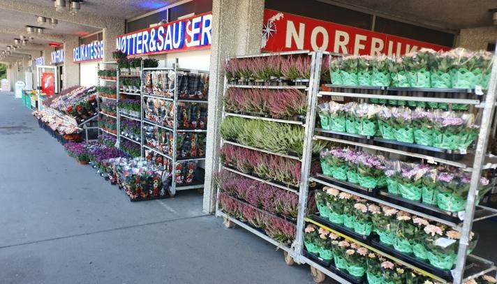 POPULÆRT MED BLOMSTER: Nor Frukt har drevet med salg av blomster i mange år. Nå skal de utvide med en egen blomsterbutikk. Foto: Yana Stubberudlien