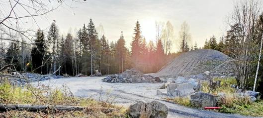 Del av Ødegård skog foreslås solgt til fremtidig utbygging