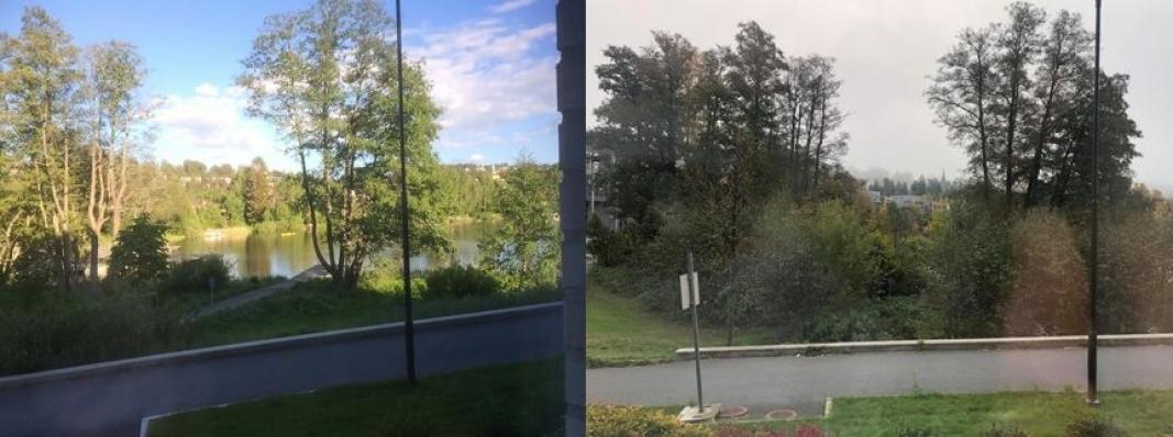 VESLEBUKTA I 2015 OG I 2020: Eivind Wremer (78), som bor i Strandliveien, mener han at kantsonen i Veslebukta så mye bedre ut for fem år siden da kommunen tynnet ut vegetasjonen der.
