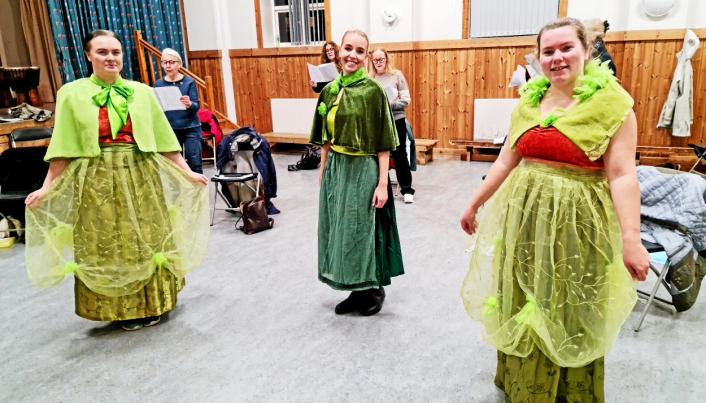 SHREK-TERSETT: Tryllefløytene har jobbet siden januar. Nå er de endelig klare for å vise frem sin nye forestilling, hvor blant annet trioen Sofie Aurora Rasten (t.v.), Martine Aurora Andersen og Kamilla Skallerud skal fremføre en tersett fra Shrek.
