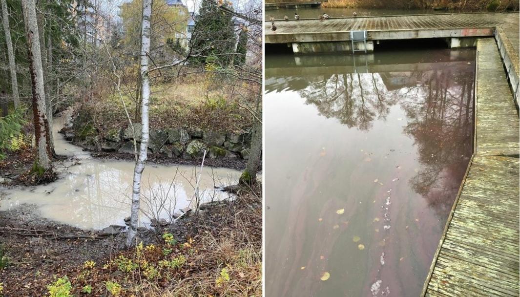 BEKYMRET FOR VANNET: Bildene viser Kantorbekken og Veslebukta i Kolbotnvannet tirsdag og onsdag denne uken. Foto: Privat