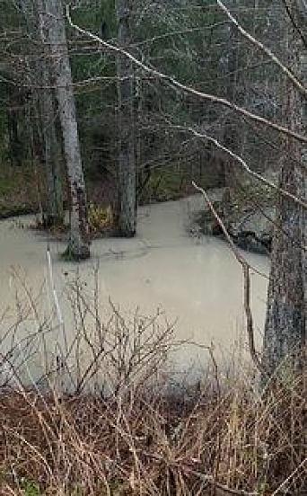 KANTORBEKKEN: Slik så vannet ut mandag 16. november klokken 15.30. Foto: Privat
