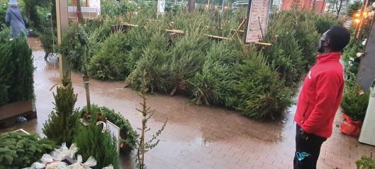 Plantasjen forbereder flytting til nye lokaler