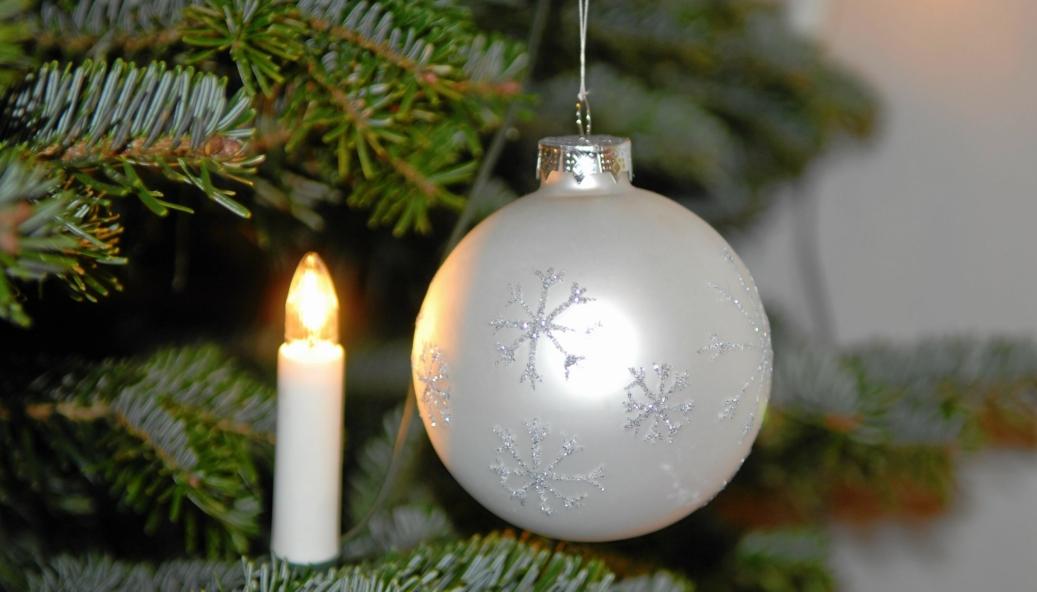PYNT: I gamle Oppegård kommune var det vanlig å dumpe juletreet på forskjellige hentepunkt. Denne ordningen finnes ikke lenger i Nordre Follo kommune.