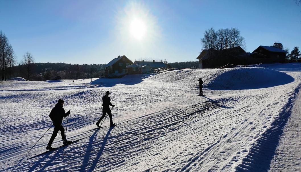 MULTIAKTIVITET: Dette er Ski sitt «svar» på Østre Greverud: Skispor, akebakker og til og med frisbeegolf-bane! Stor parkeringsplass og godt med areal – mindre trengsel enn på Østre Greverud. Kan fint kombineres med en (bratt) gå- eller skitur til Sandbakken. 14 km fra Sofiemyr stadion.