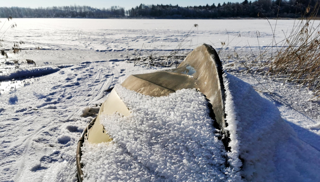 FISKETUR: Nærevannet var tidligere drikkevann for Ski. I 1992 ble det vernet som naturreservat. Vannet er svært næringsrikt og dermed et populært fiskevann: Her finnes gjedde, abbor, mort, brasme og sørv. Ta med boret og pilken. Svært god plass (vannet er 0,7 km2 stort). 21 km fra Sofiemyr stadion.