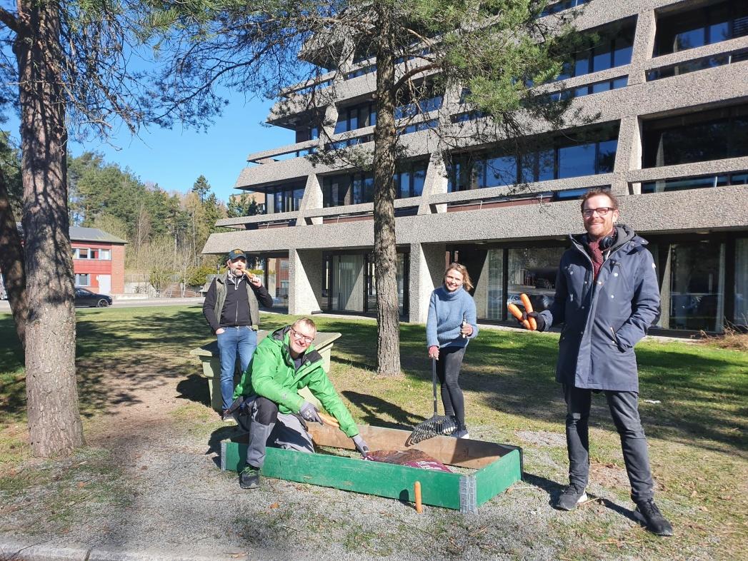 ENIGE OM PARSELLHAGER: På bildet kan du se Tor Anders Østby (Sp), Paal Sjøvall (Sp), Camilla Hille (V) og Jens Nordahl (MDG) som vil gjerne se parsellhager syd for rådhuset. Foto: Yana Stubberudlien