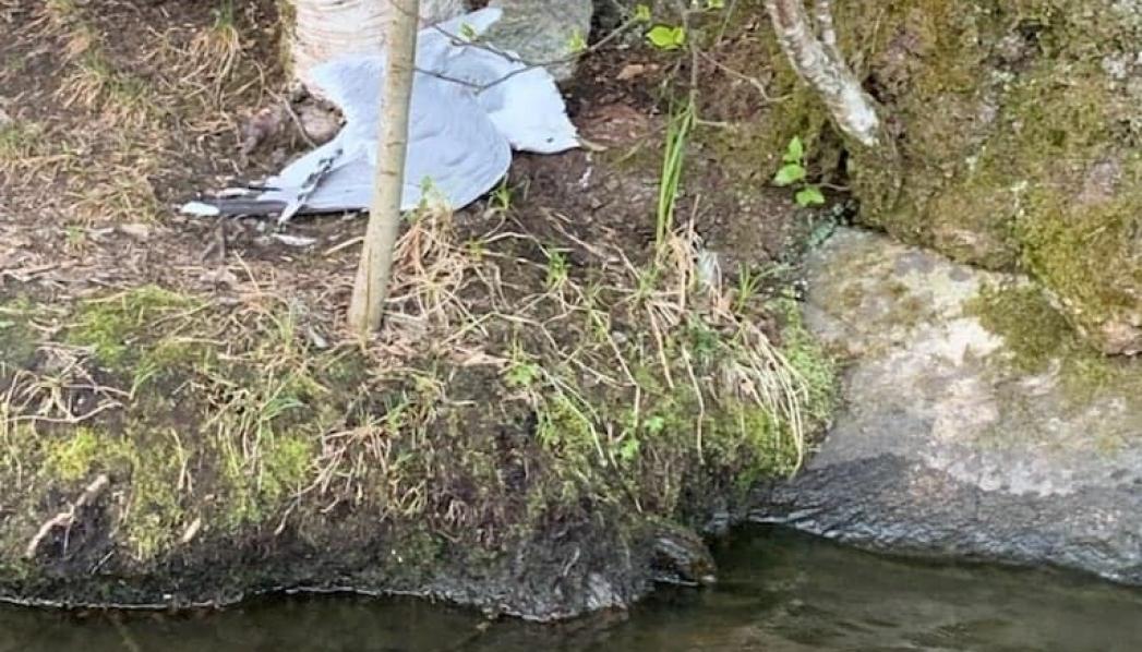 DØD FISKEMÅKE: Det er her ved vannkanten at Esther Skiri fant den døde fiskemåken for halvannen uke siden. Foto: Esther Skiri