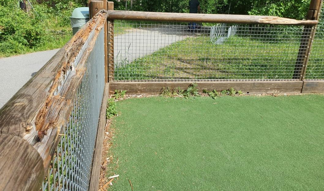 SLIK SÅ DEN UT: Treverket rundt ballbingen på Fløysbonn er råttent/ ødelagt på flere steder. Ugresset vokser også inne i ballbingen.
