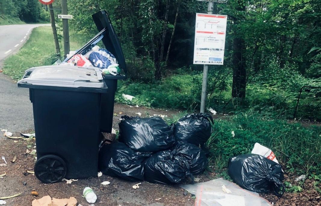 HVEM TAR RYDDEJOBBEN? Er dette Oslo eller Nordre Follo sitt søppel? Det er det store spørsmålet.
