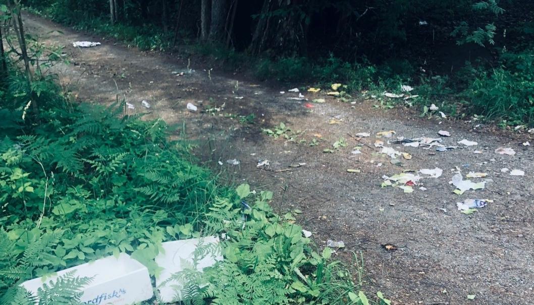 SPRES UTOVER: Når kassen blir fulle og søppelet legges utenfor blir det et lett bytte for dyrelivet i området. Da ser det raskt slik ut.
