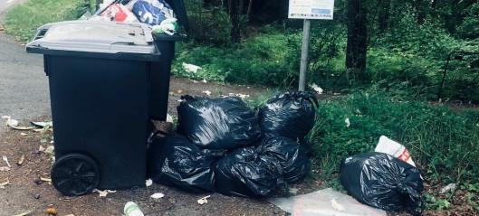 Søppelkassene «ingen» eier