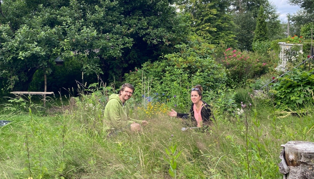 VILL SONE: I denne delen av hagen har Mariella Nora Isabella Filberg Memo latt det gro fritt. Det har en miljøeffekt som både gleder og inspirerer MDG-politiker Hans Martin Enger.