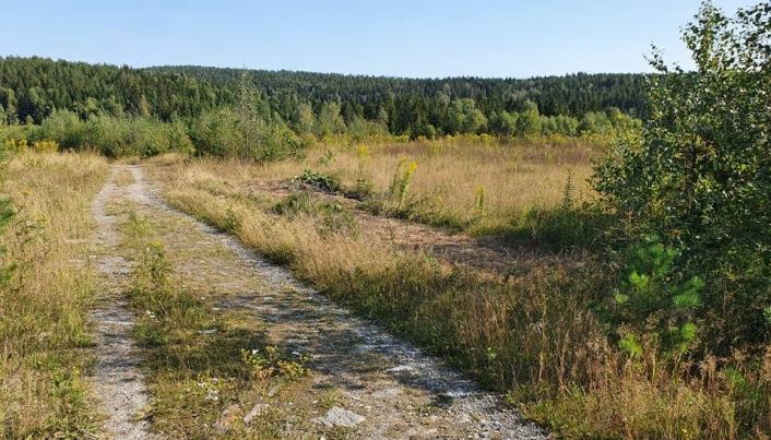 SLIK SER DET UT NÅ: Bildet er tatt søndag 29. august. Foto: Yana Stubberudlien