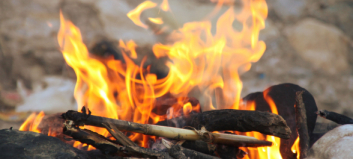 Stor fare for skogbrann