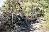 TOK FYR: I 2018 tok det fyr i et skogområde på Myrvoll. Brannen startet trolig på grunn av en engangsgrill.