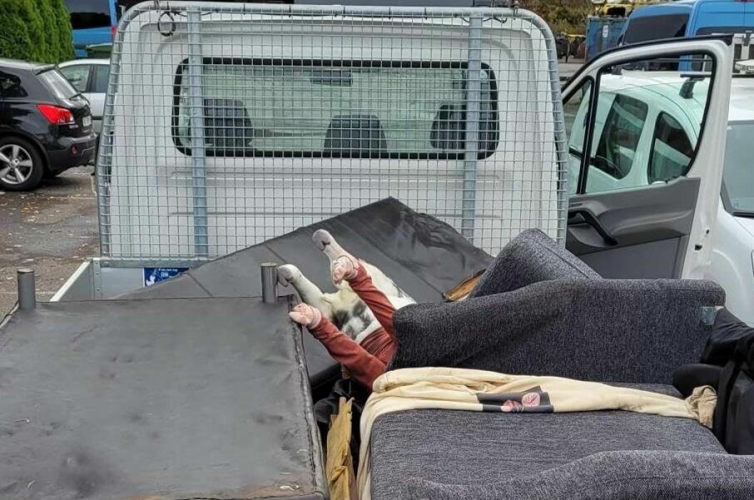 IVARETATT: Nordre Follo kommune rykket raskt ut til stedet og fjernet både møbler og sau.