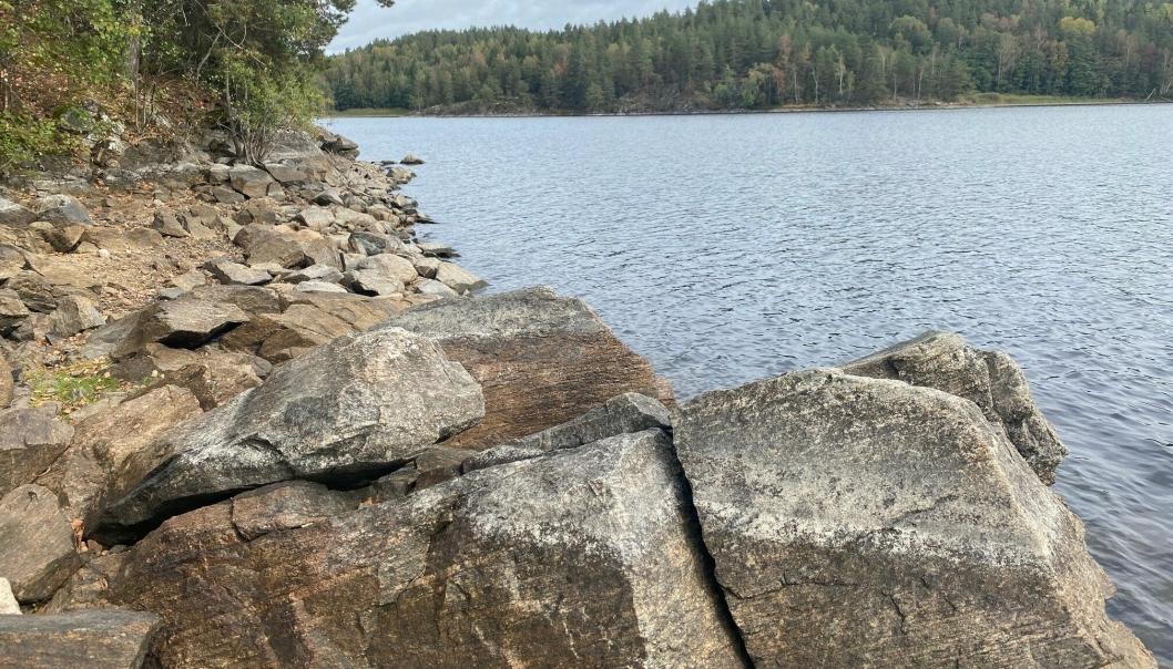 TØRRLAGT SJØBUNN: Bildet av Gjersjøen, som er tatt tirsdag formiddag ved avkjøringen til Svartskog, viser stor tørrlagt sjøbunn.