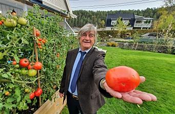 Sjekk Milans tomatkjempe!